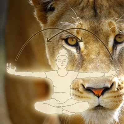 Person doing kundalini yoga lions paw kriya in superimposed in front of a female lion