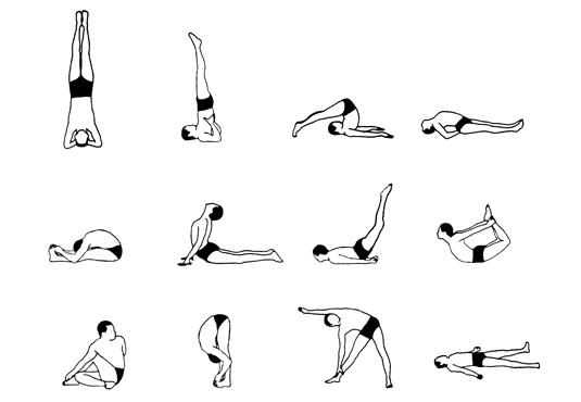 12 Basic Sivananda Asanas